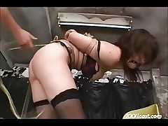 Asian Doomed Added to Toyed More Stockings