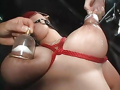 Milk Maids 00014 Affixing 2